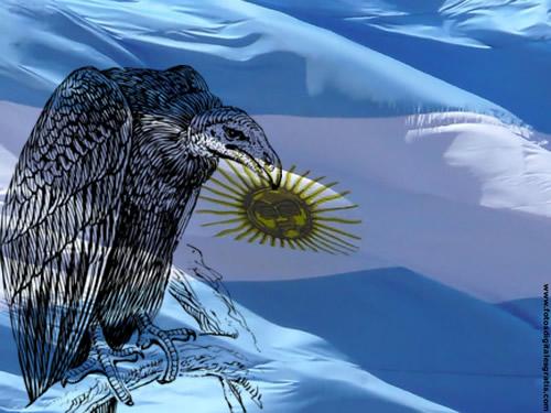 Argentina-BuitreFDG1